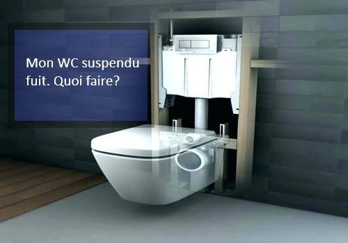 Ventes interventions depannage WC suspendu