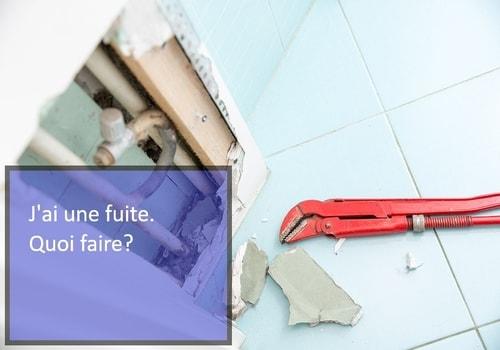 Ventes services depannage fuite canalisation