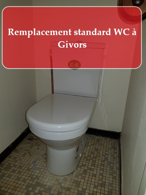 Remplacement-WC-au-sol-Givors